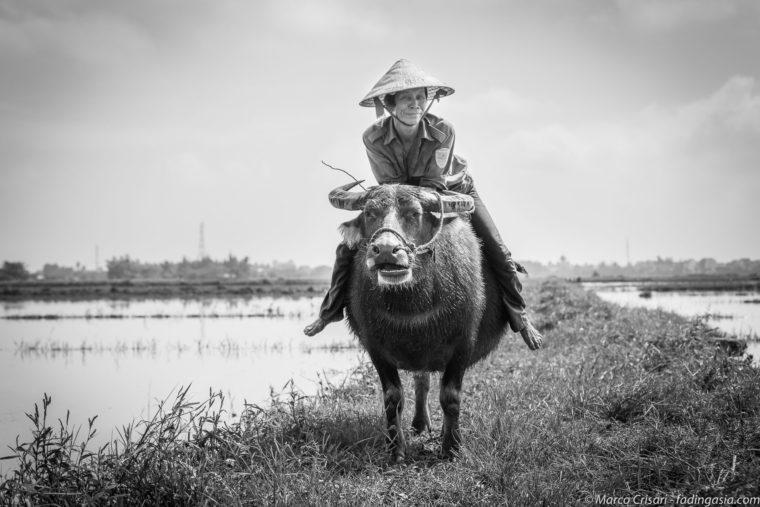 Vietnam – II